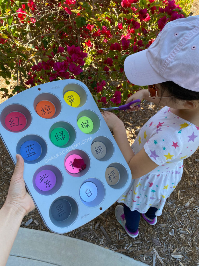 Nature color scavenger hunt for kids with muffin pan for collecting