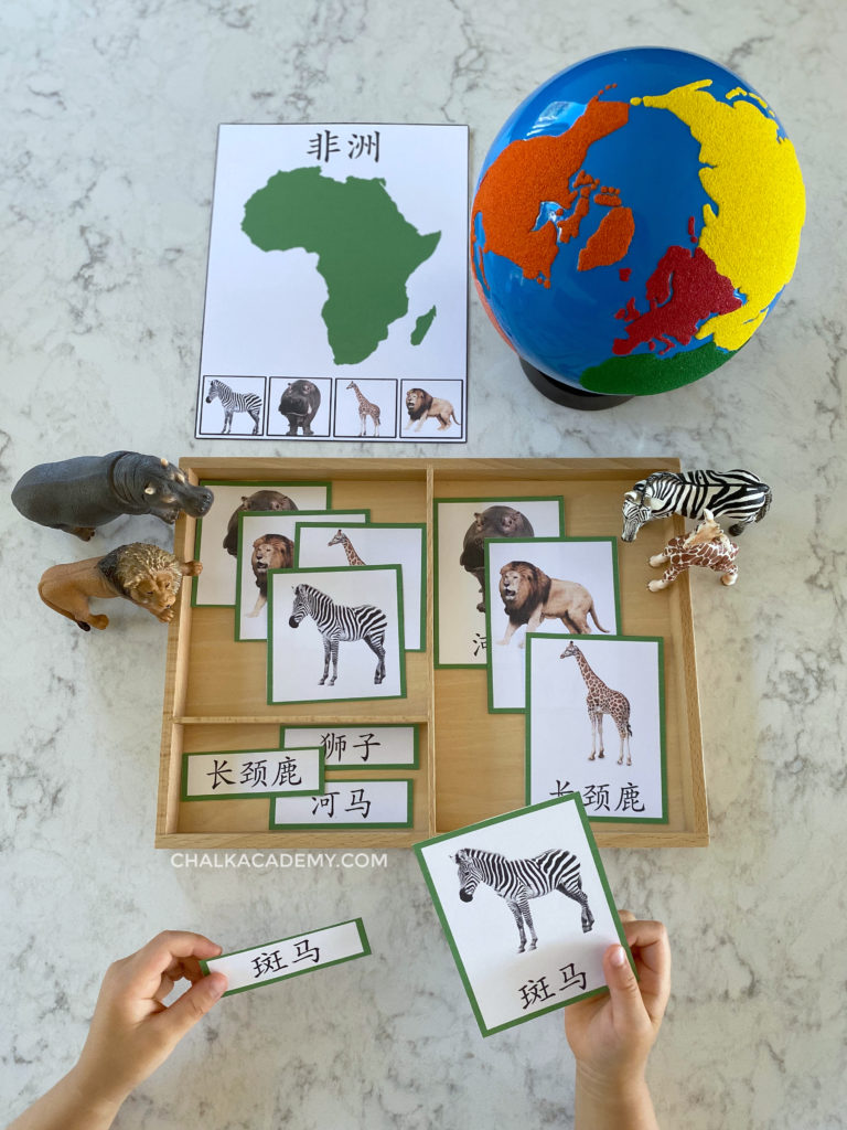 Montessori Animals and Continents 3-Part Cards (English, Chinese, Korean)