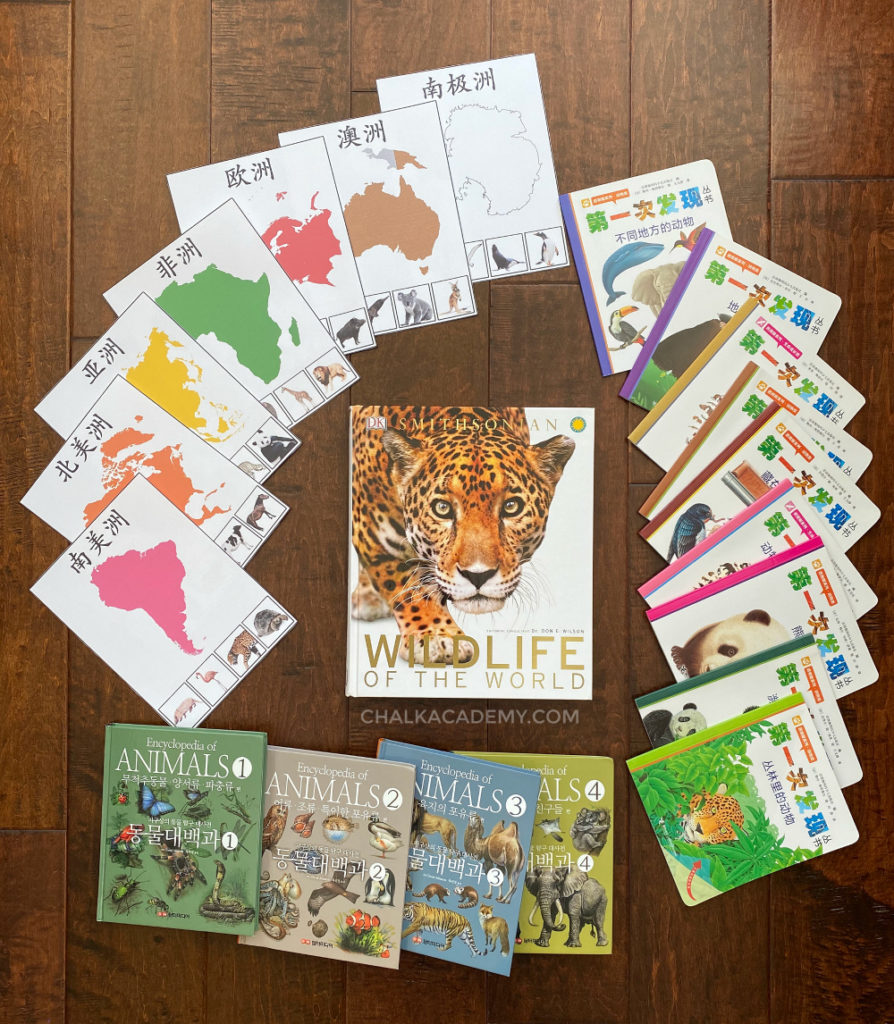 Learning about animals of the world - Montessori continents, Chinese amimal books, English and Korean animal encyclopedias
