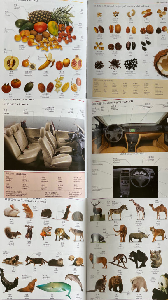 DK's Chinese picture dictionary