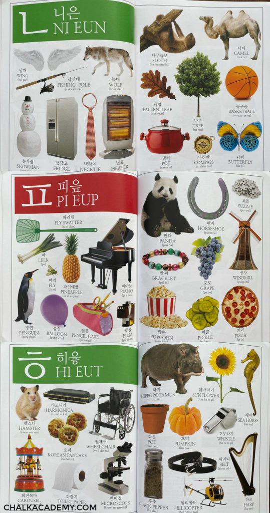 My First Korean & English Picture Dictionary - Teach Kids Hangul Consonants