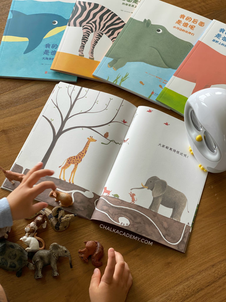 Learning Chinese location words by lining up toy animals following picture book