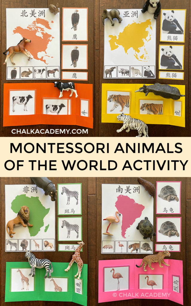 Montessori animals of the world activity - free Chinese printables for kids, students, homeschool, school, teachers
