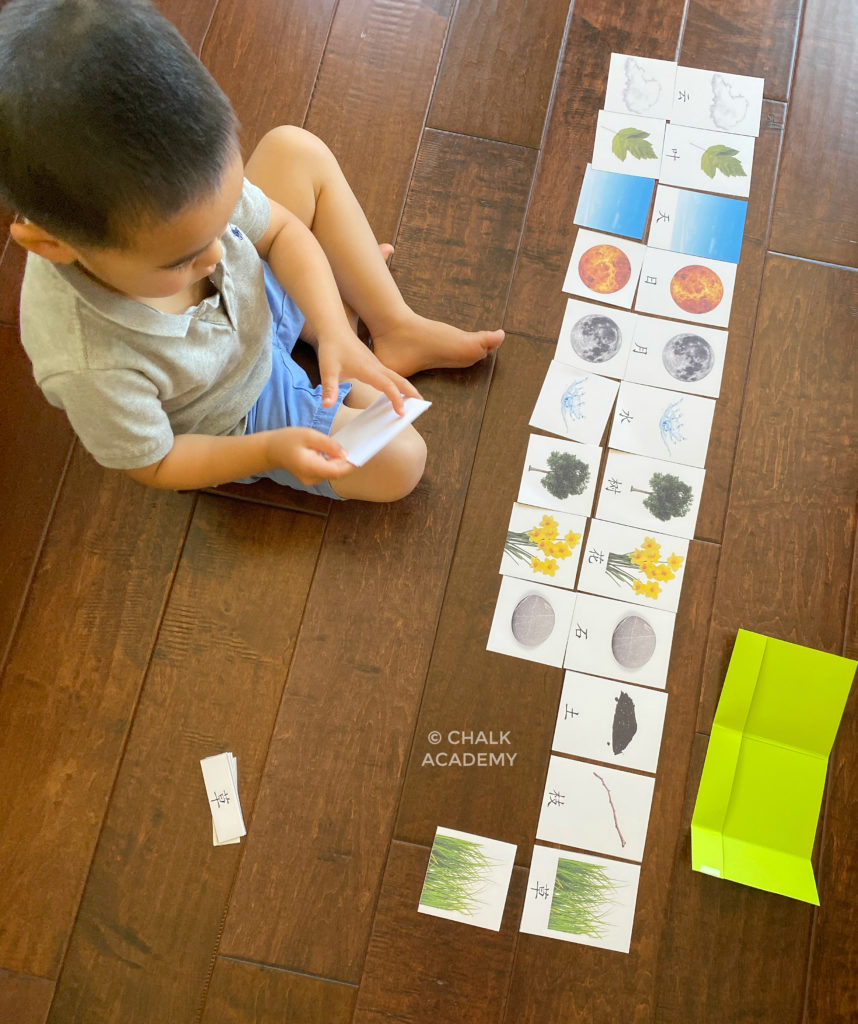 Printable Nature Montessori 3-Part Cards (Chinese, Korean, English)