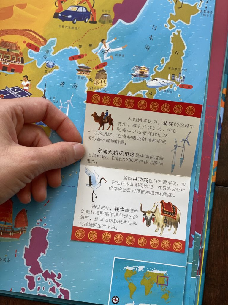 Chinese animal atlas book with flaps for kids