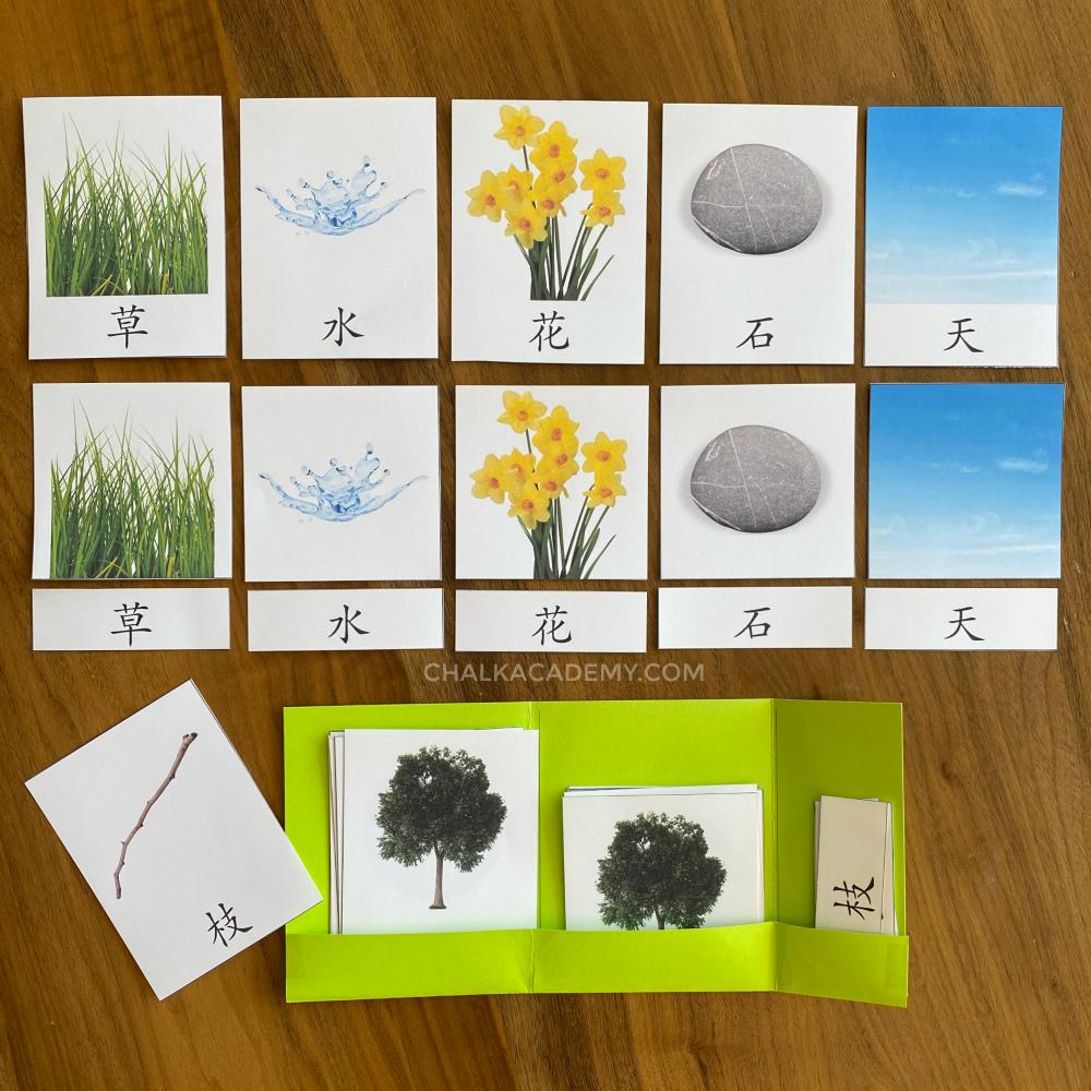 Printable Nature Montessori 3-Part Cards (Chinese, Korean, English)