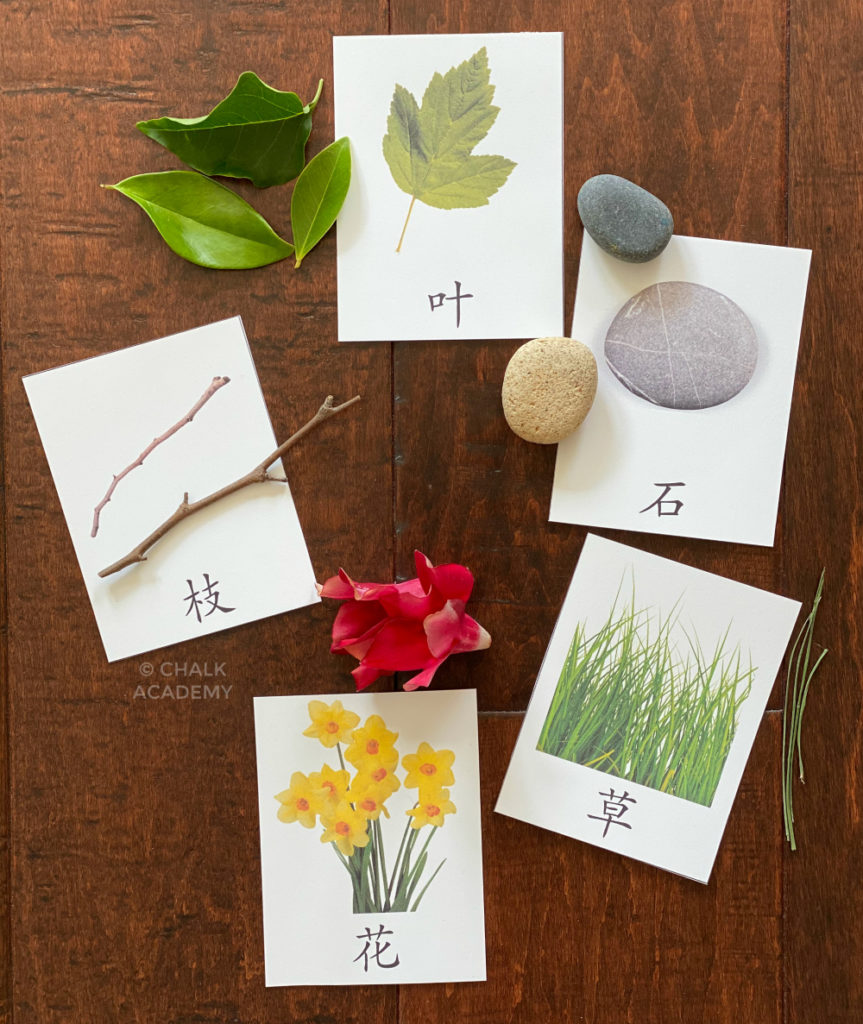 Montessori Chinese nature flashcards