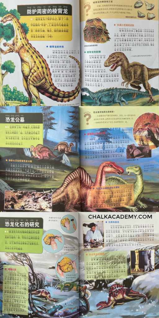 Visual Encyclopedia of Dinosaurs / 恐龙世界大百科 (Chinese)