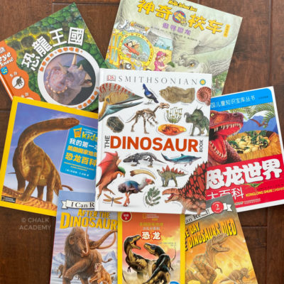 English and Chinese Dinosaur Books for Kids of All Ages!
