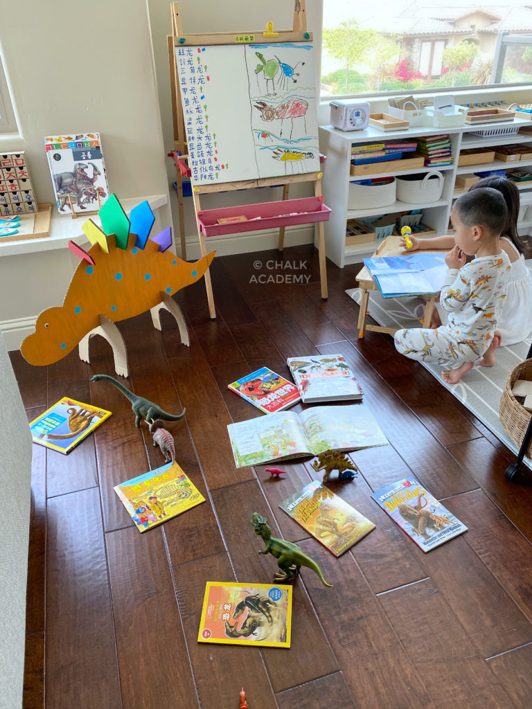 English and Chinese dinosaur books, cardboard dinosaur, dinosaur toys for kids