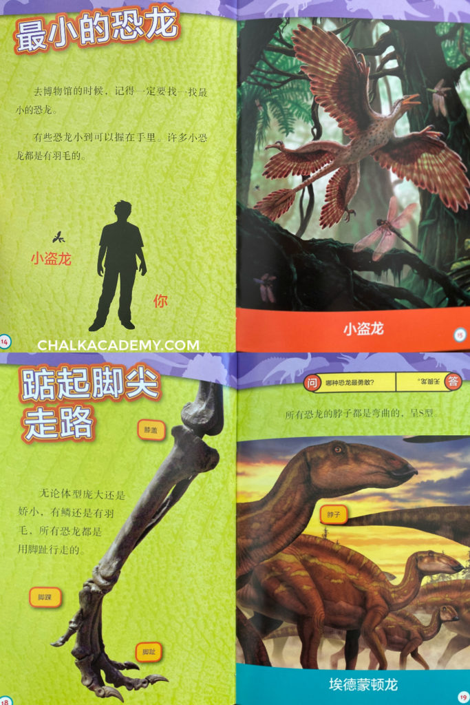 National Geographic graded readers about dinosaurs (Chinese and English)
