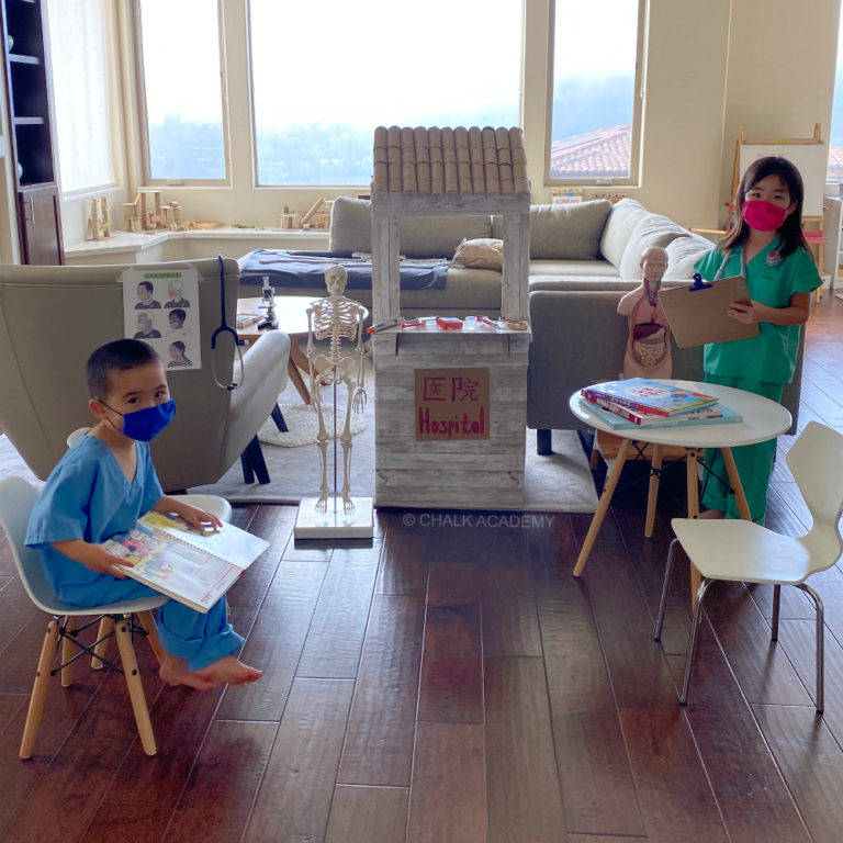 Pretend play - doctors at the hospital with human anatomy toys - science gifts for kids