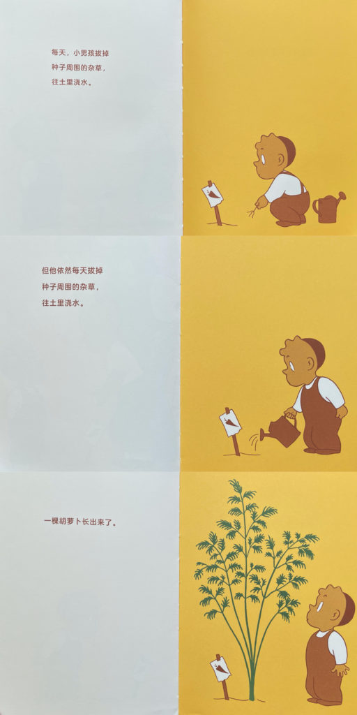 The Carrot Seed 胡萝卜种子 Chinese picture book about food for kids