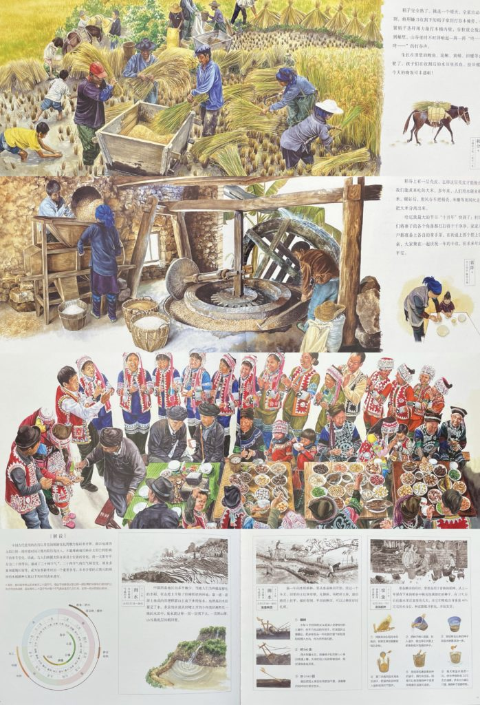Rice 盘中餐 / 盤中餐 Chinese story book about food