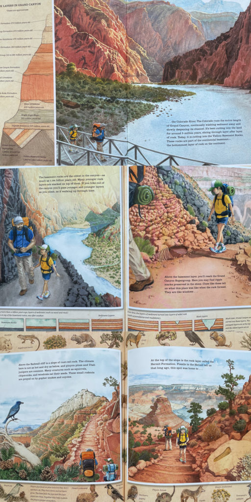 Grand Canyon by Jason Chin - science nature picture book with Chinese American boy