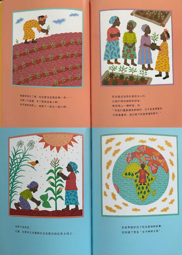 和平树 / 和平樹 Wangari's Trees of Peace: A True Story from Africa - Chinese picture book
