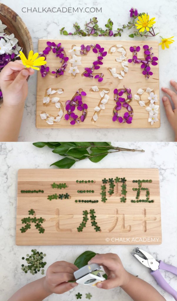 Montessori inspired nature flowers and leaves with wood number boards