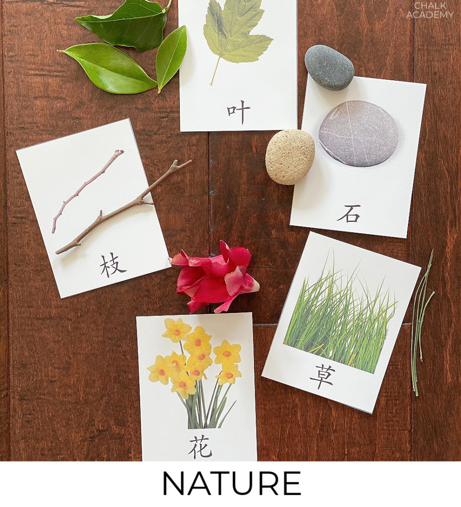 Bilingual nature learning activities and printables for kids